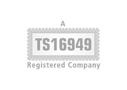 tn-TS16949-logo